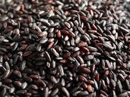 riz vénéré brun